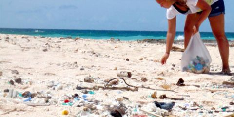 Clean up our beaches: Bag a Beer
